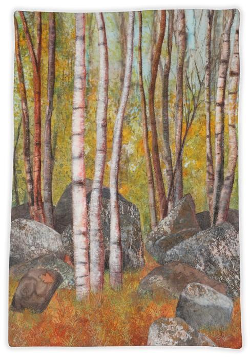 Split Rock Woods