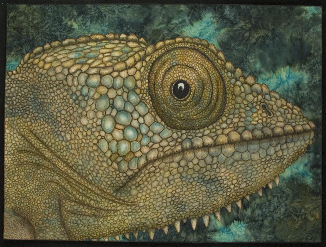 Chameleon – The Eyes Have It Series